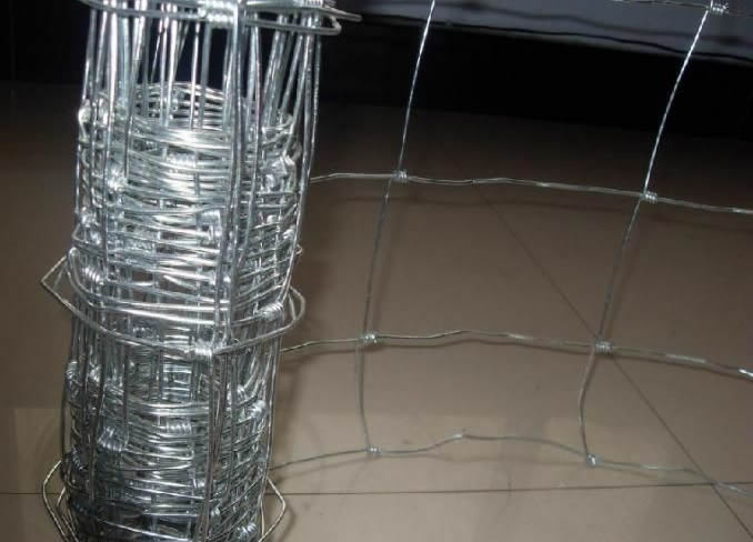 Wire Mesh Horse Fencing
