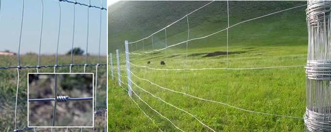 Hinged Joint Wire Fence